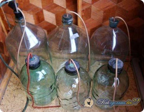 Вино дома своими руками
