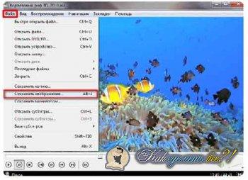 Как сделать скриншот - Media Player Classic?
