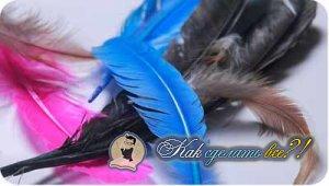 Как сделать серьги из перьев?