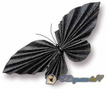 Как сделать бабочку из бумаги?
