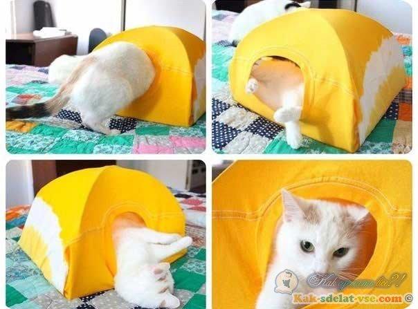 Как сделать для кошки домик