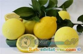 Как вырастить лимон?